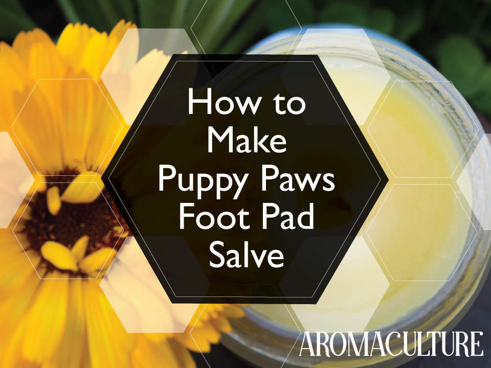 how-to-make-puppy-paws-foot-pad-salve-for-dogs-aromaculture.png