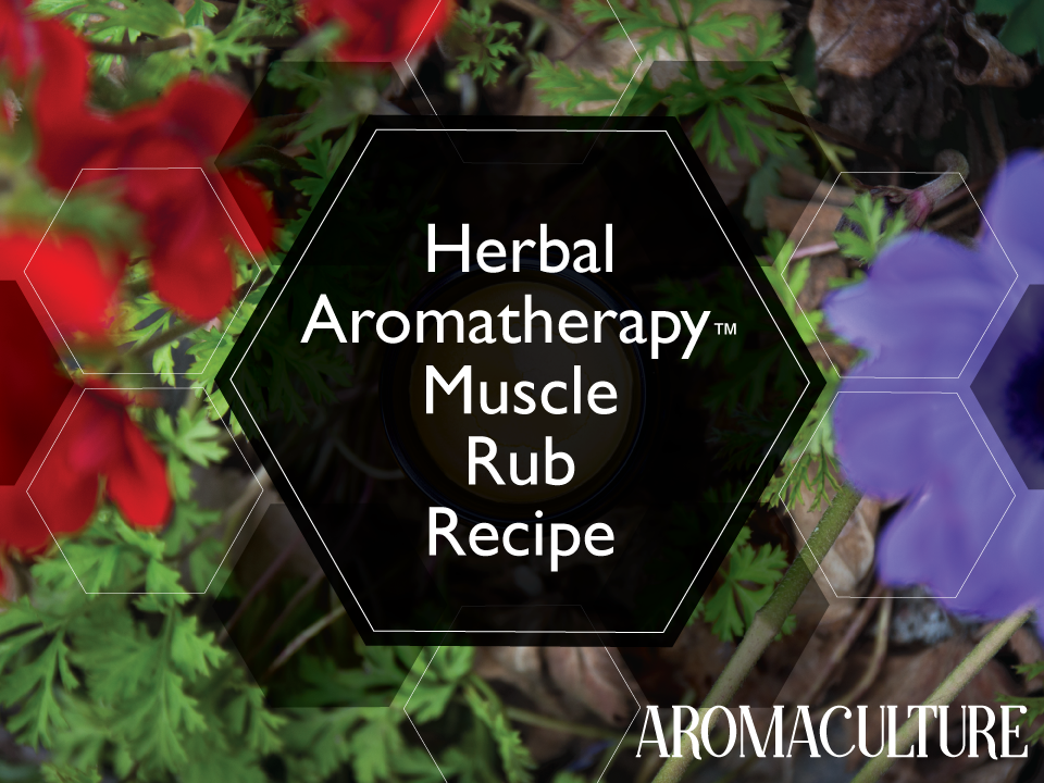 herbal-aromatherapy-muscle-rub-aromaculture.png