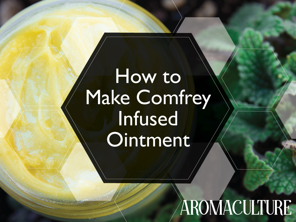 comfrey-ointment-aromaculture.png