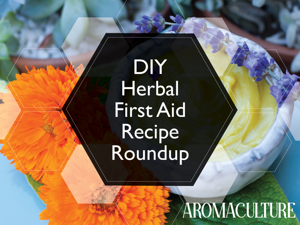 herbal-first-aid-recipe-roundup.png