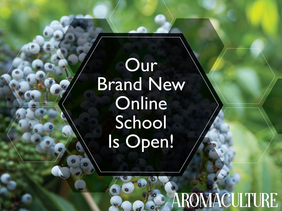 online-school-aromaculture.png