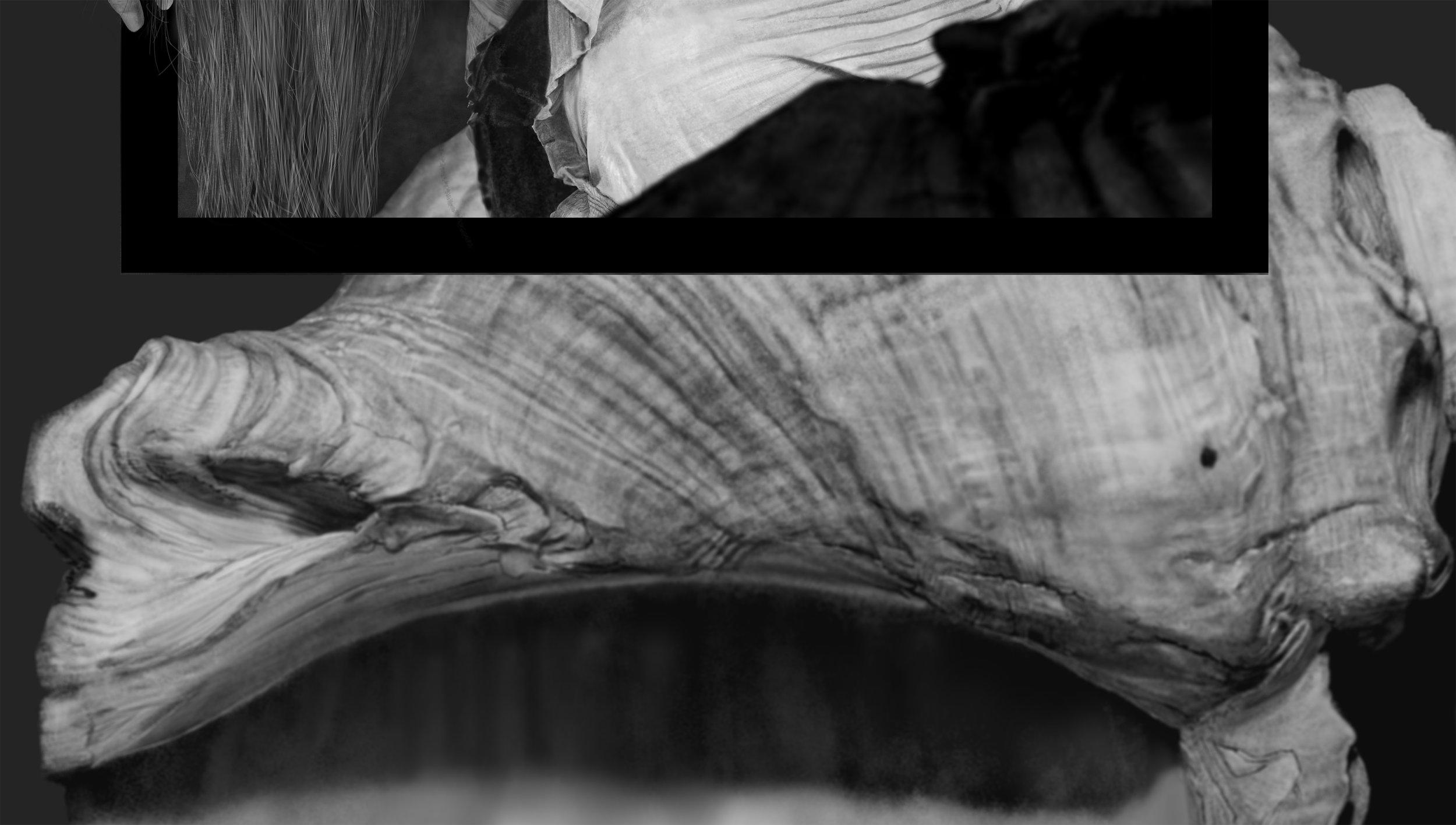 shell detail.jpg