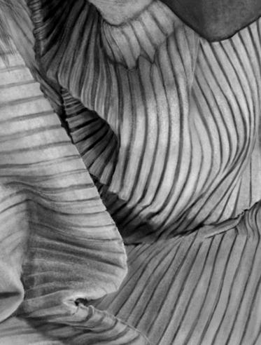 cloth textures.jpg
