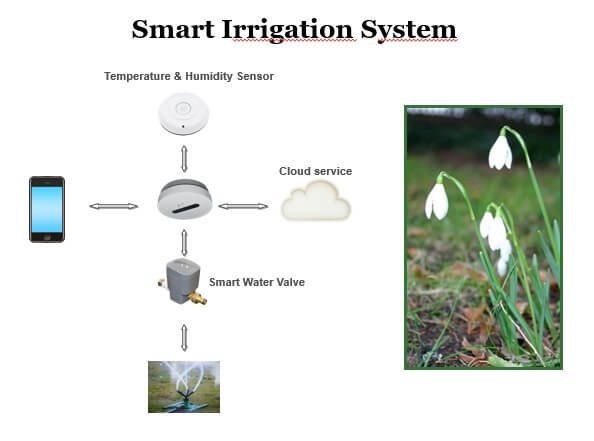 ระบบ Hotel Automation - Smart Irrigation Systems