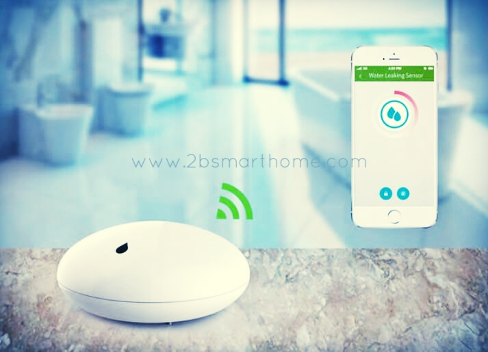 Smart Water Leakage Sensor