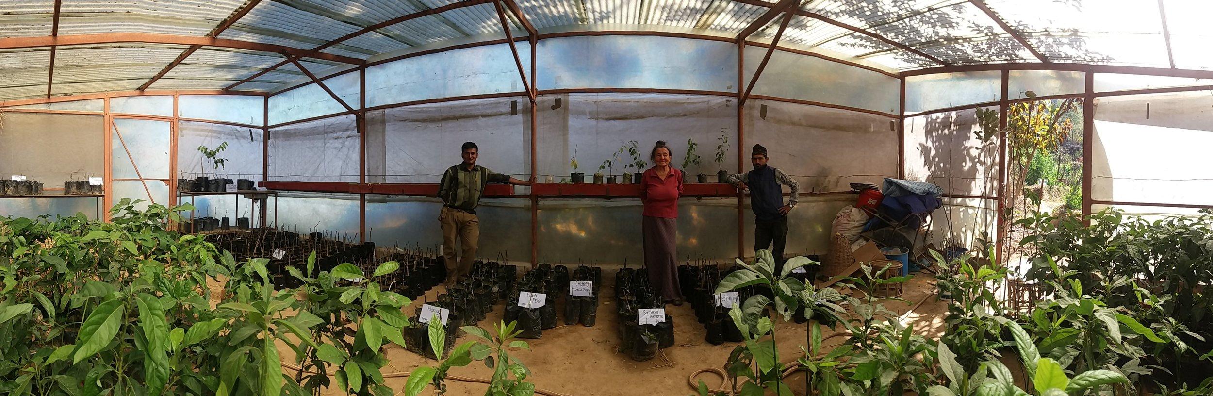 greenhouse pano.jpg