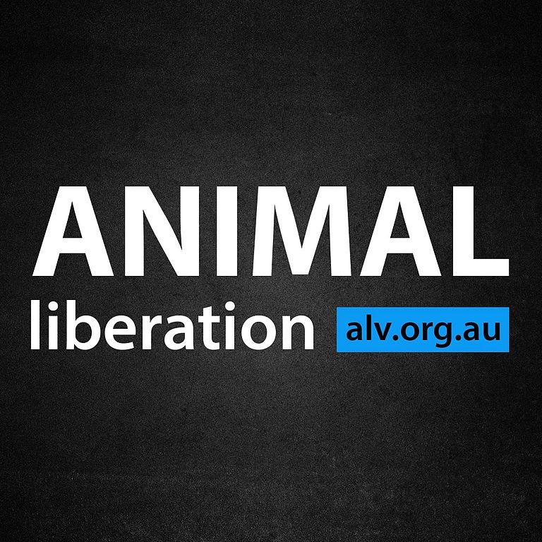 Alv-logo.jpg