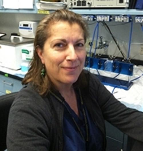 Past President of the Arizona Physiological Society  Layla Al-Nakkash, PhD