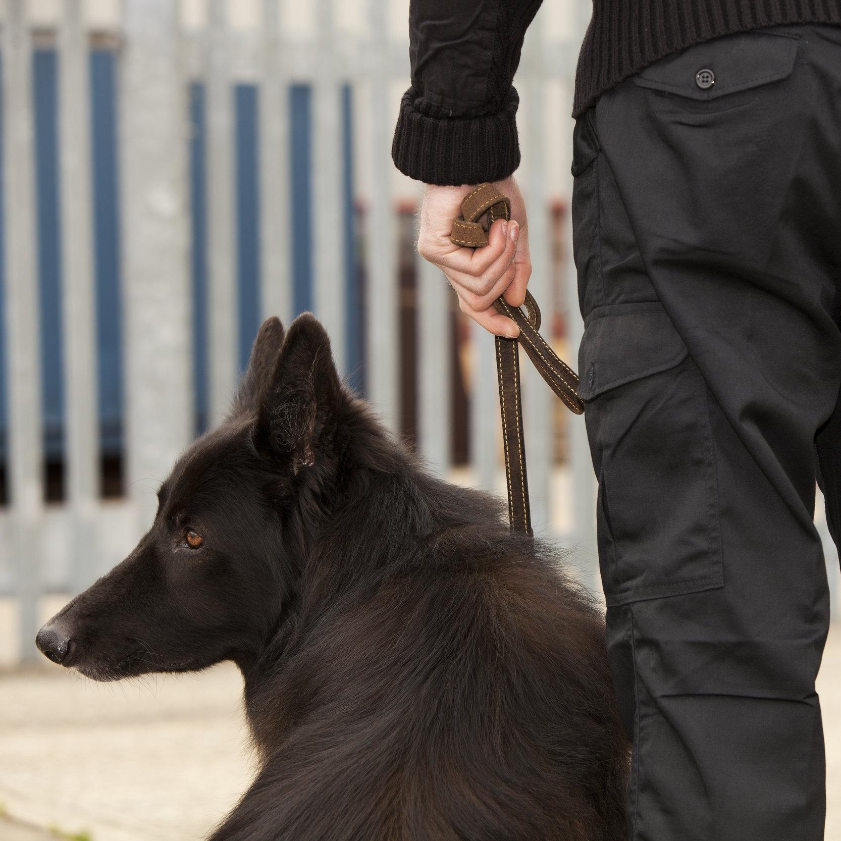 Dog Handlers -