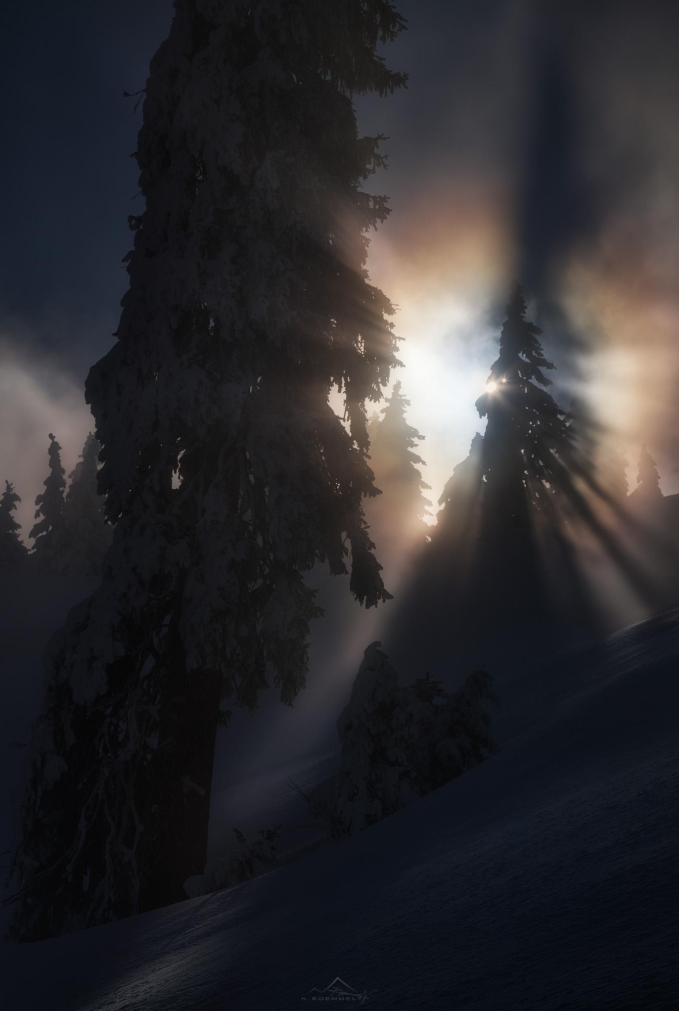 An der Obergrenze des Hochnebels ist es dann soweit: hier finden wir genau die mystischen Stimmungen aus dem Zusammenspiel von Nebel, Licht, tief verschneite und vereiste Bäume und Schatten, die wir gesucht hatten ...