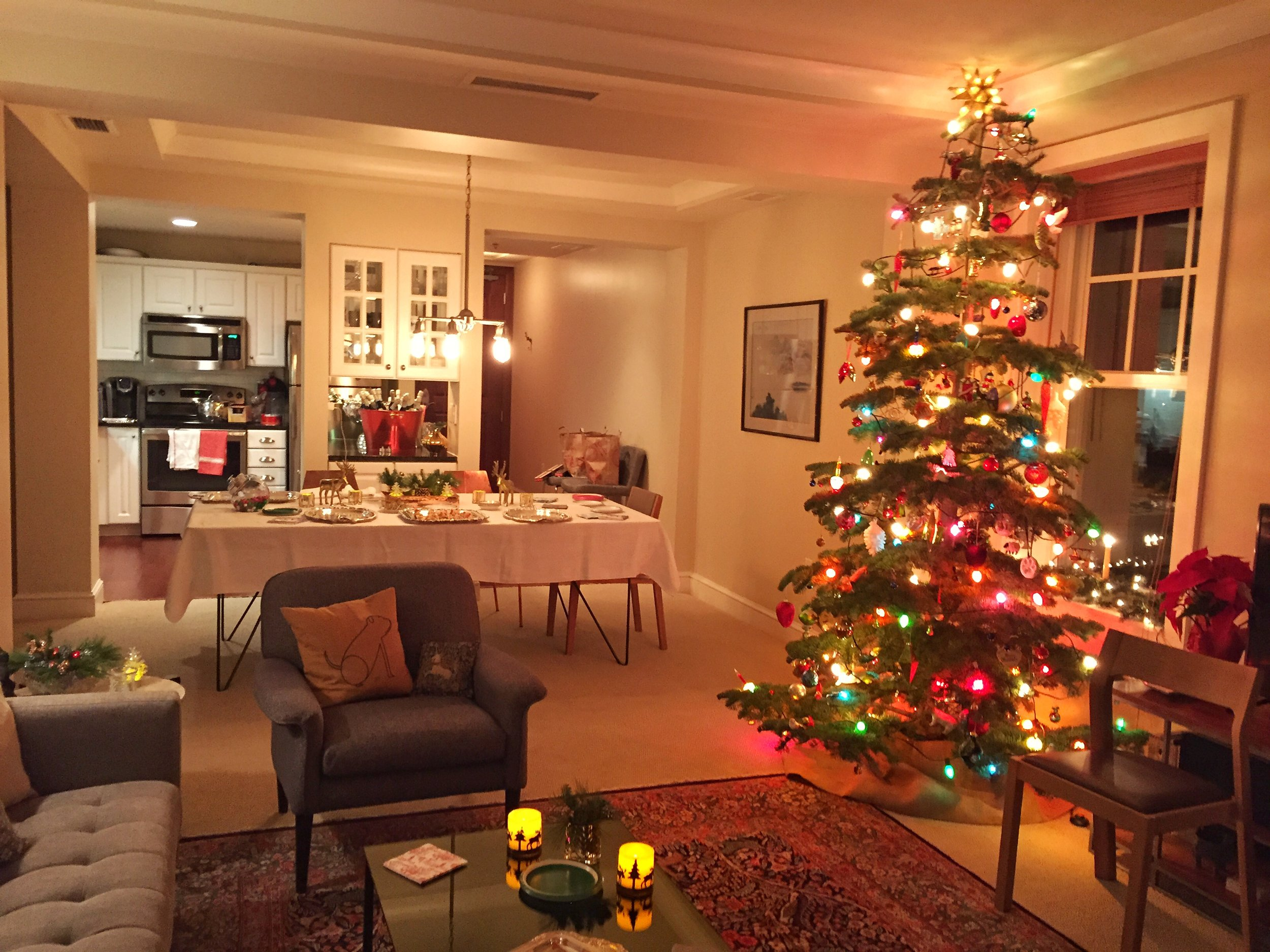 Our Holiday Party in 2016 in our apartment in Minneapolis, Minnesota.