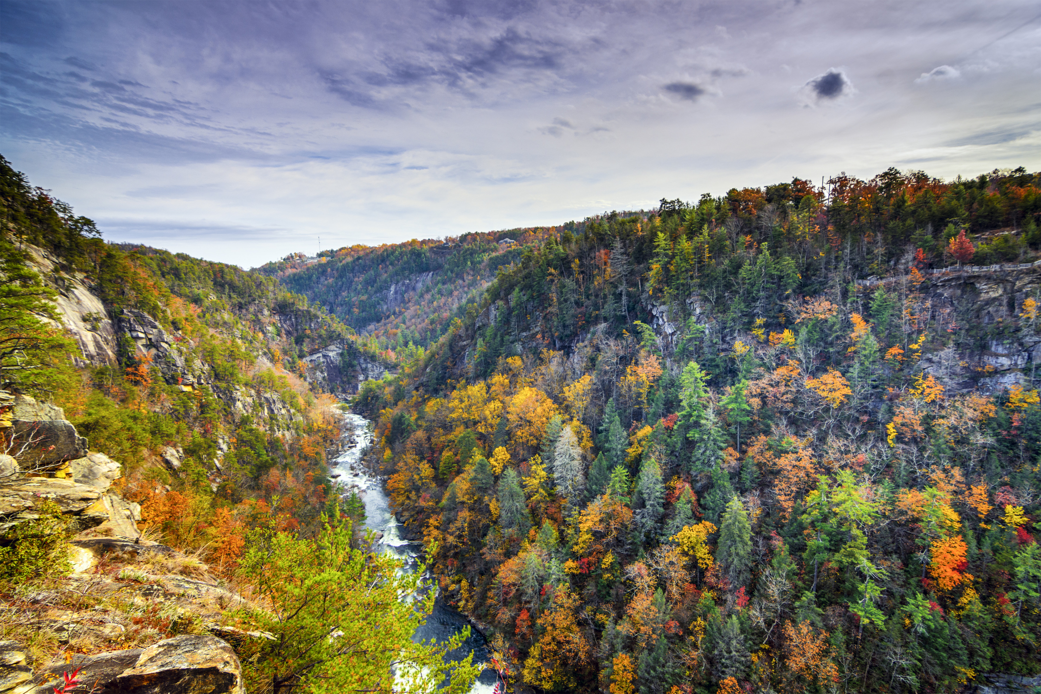 Georgia Association of Conservation Districts   Protecting, Conserving, and Enhancing Georgia's Natural Resources