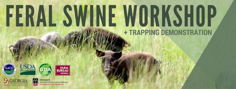 Feral Swine Header.jpg