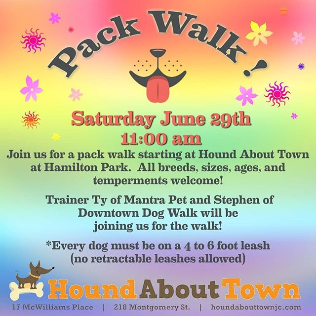 Kwe' y'all! Join us for a Pride month pack walk! Please bring water for your pup as well as a soaked bandana for them to wear 😸 (& bring your highest value treats, a kong stuffed with MORE treats if you want to work settling, and we'll see you there!) #jerseycitypets #jerseycitydogs #packwalk #packwalknation #queerbusiness #pridemonth