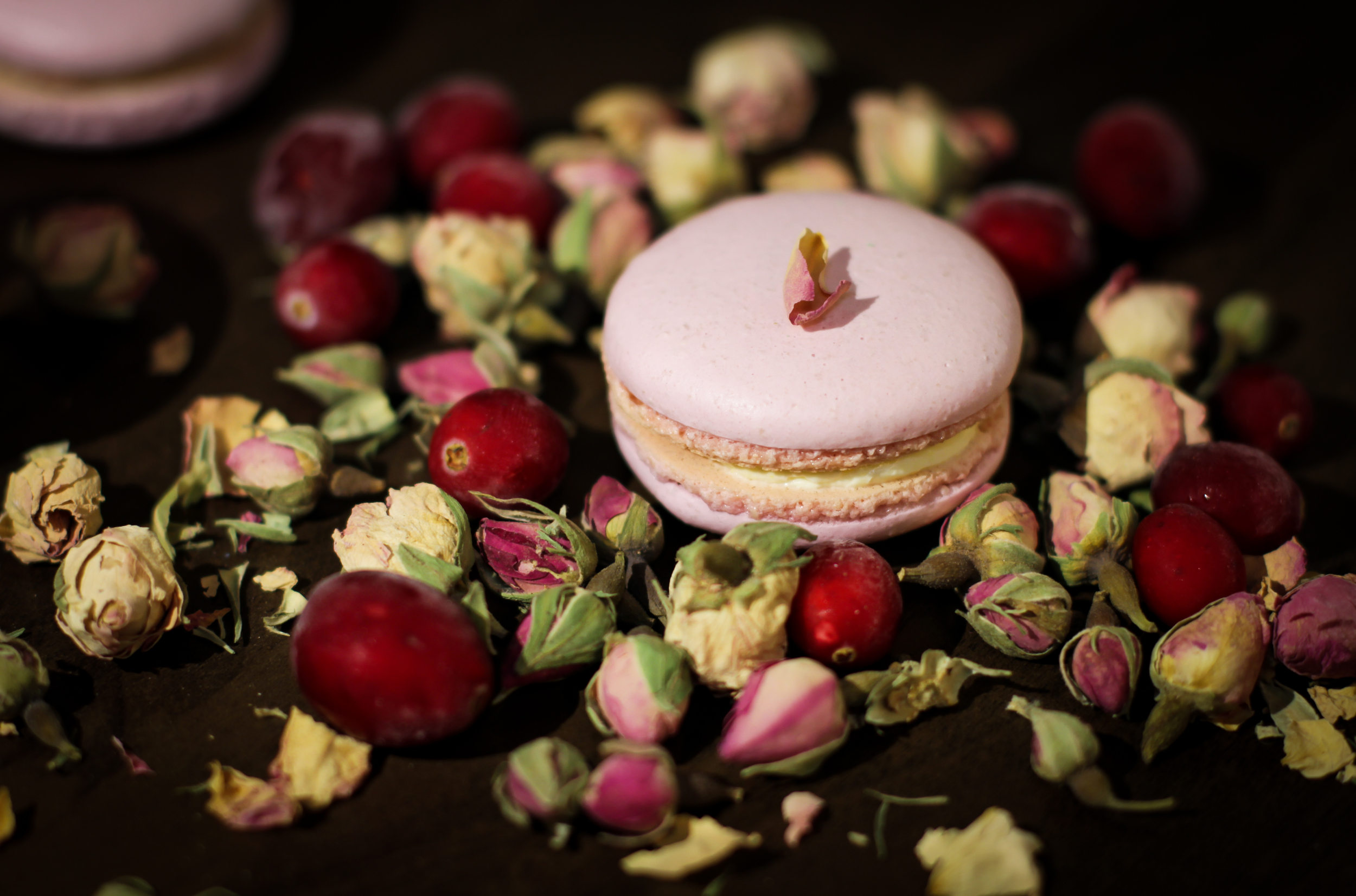 Rose and Cranberries Macarons.jpg