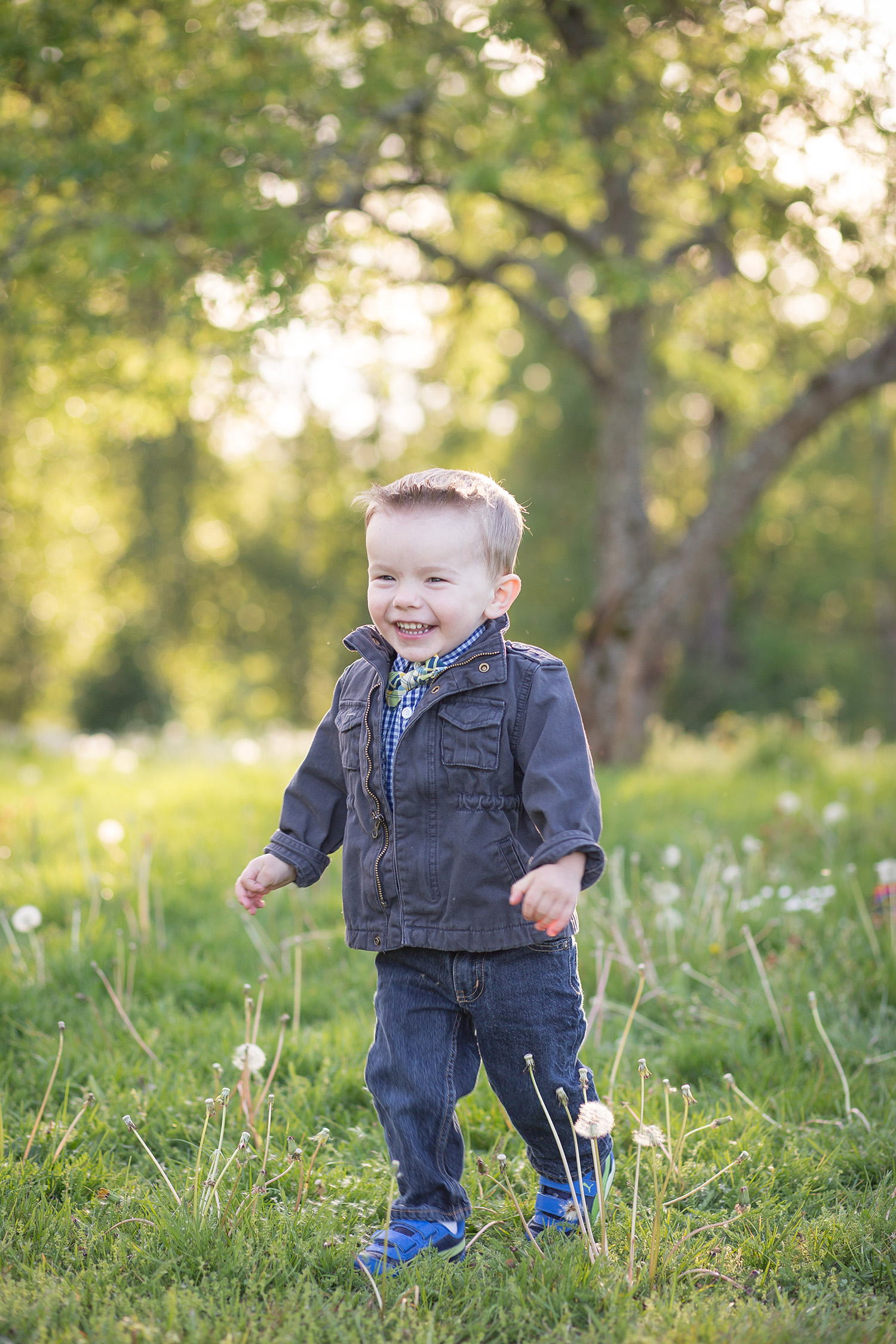 baby toddler and childrens photography bellevue wa