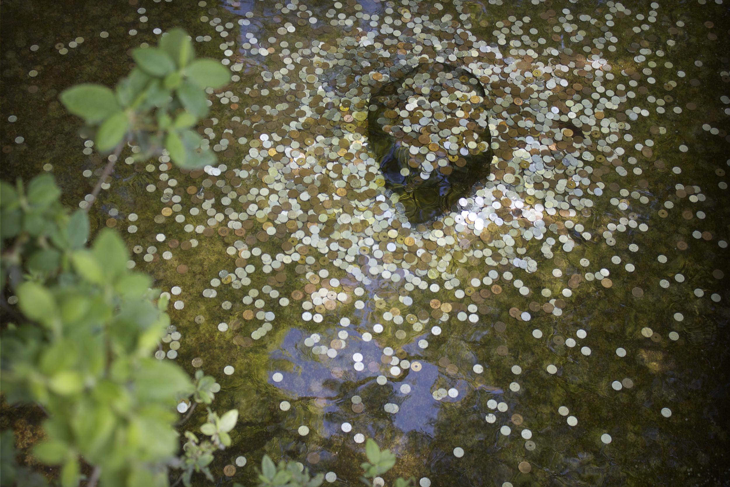 wish_pond.jpg