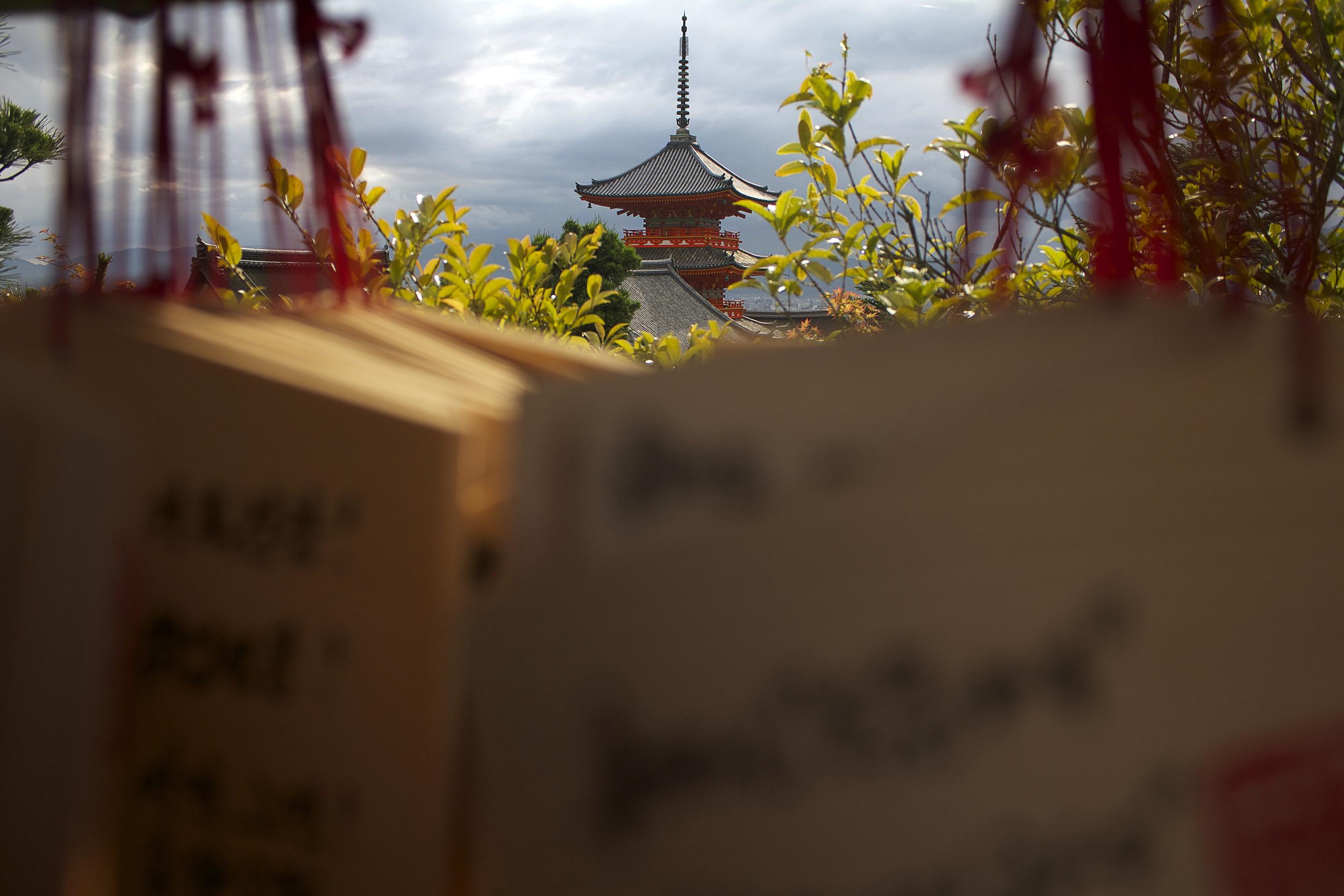 shrine_top.jpg