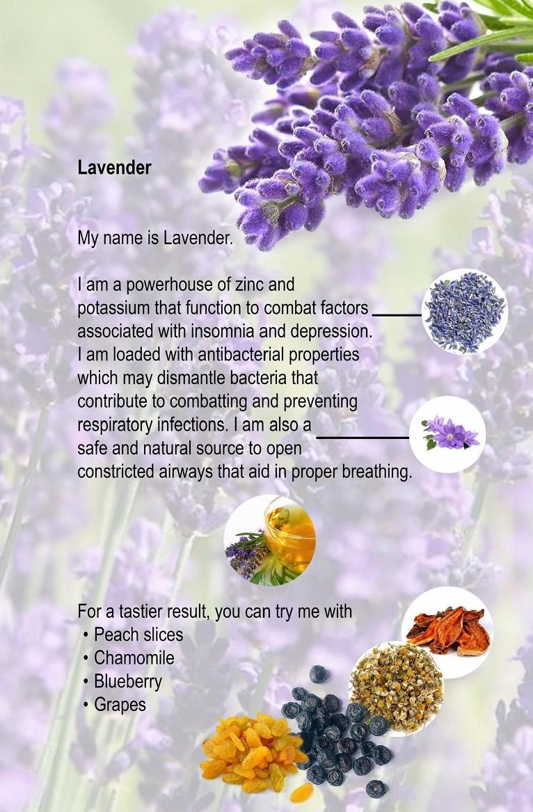06. Lavender.jpg