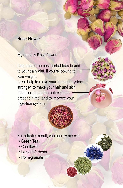 12. Rose Flower.jpg