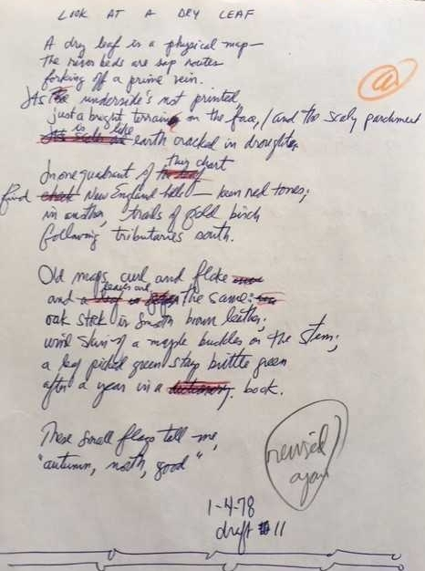"""Draft #11 of """"Look at a Dry Leaf"""" in author's notebook, January 1978."""