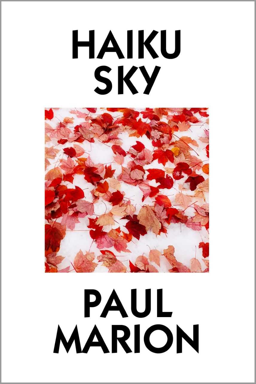haiku sky cover.jpeg