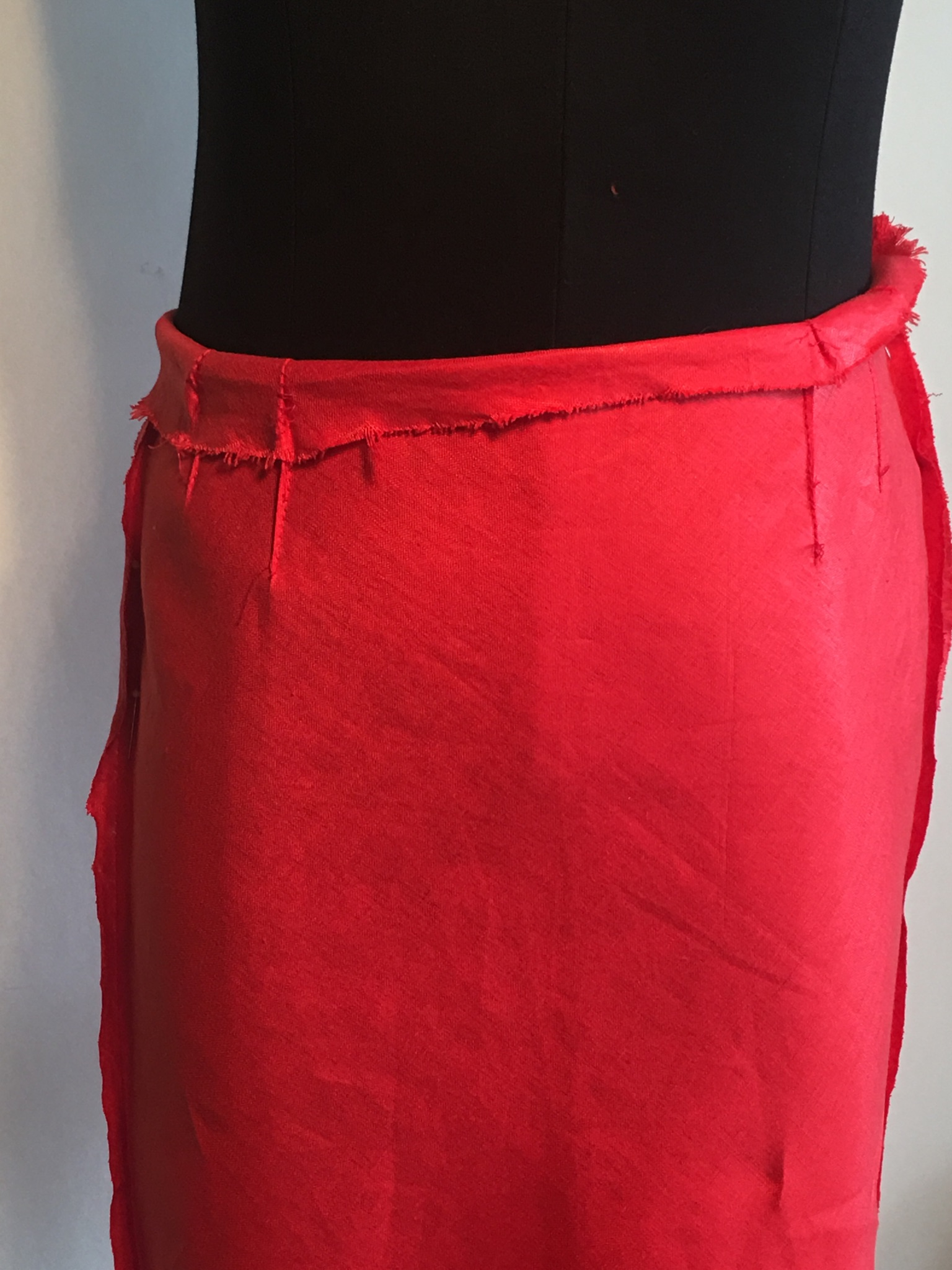scoliosis red skirt 4.jpg