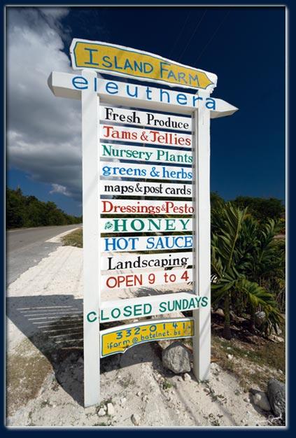 island-farm-eleuthera copy.jpg