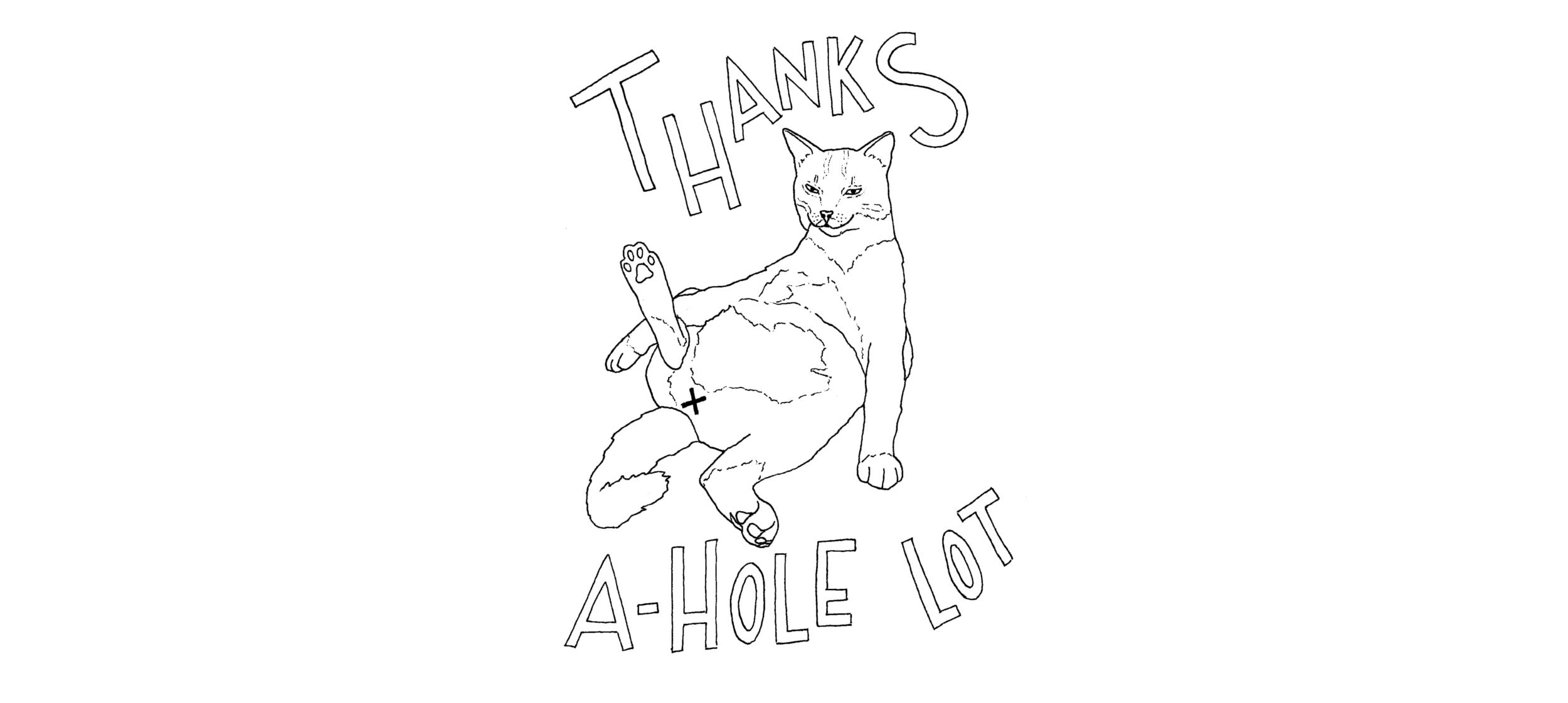 Cat_A.Hole_Card_(Jim)-small.jpg