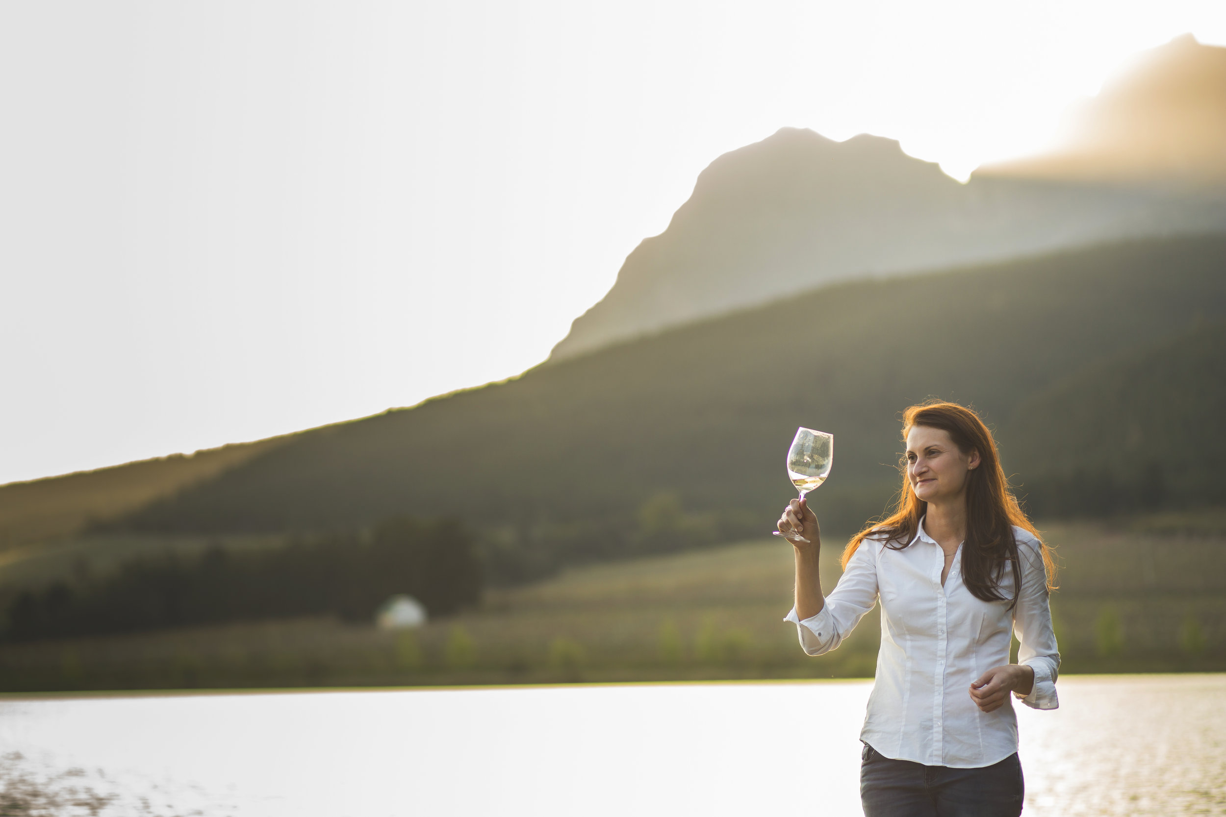 Illimis - Named as one of South Africa's top Chenin Blanc producers in Decanter July 2019, and best in Elgin.Namibian born Lucinda Heyns first studied viticulture in South Africa before heading across to the States to gain valuable experience with the likes of Raj Parr, Sashi Moorman and at Screaming Eagle. Returning to the Cape, she worked as a viticulturist at Jordan estate and Mulderbosch, founding Illimis Wines in 2015. Illimis is the Latin for clarity, which underpins her philosophy of winemaking, minimal intervention and integrity of fruit from the vineyard all the way into the bottle. Being a viticulturist at heart, she believes that everything starts with the vines. Every vintage is unique, and her hope is that every wine is a tribute to the endless pursuit of refining the potential of each site the Illimis wines are made from. It's a philosophy very close to our hearts and we are so excited to see how her wines progress. The 2016 Chenin Blanc was heralded one of the best in Decanter Summer 2019, and that's just her second vintage!Click on wines below for further details and overview of tasting notes.