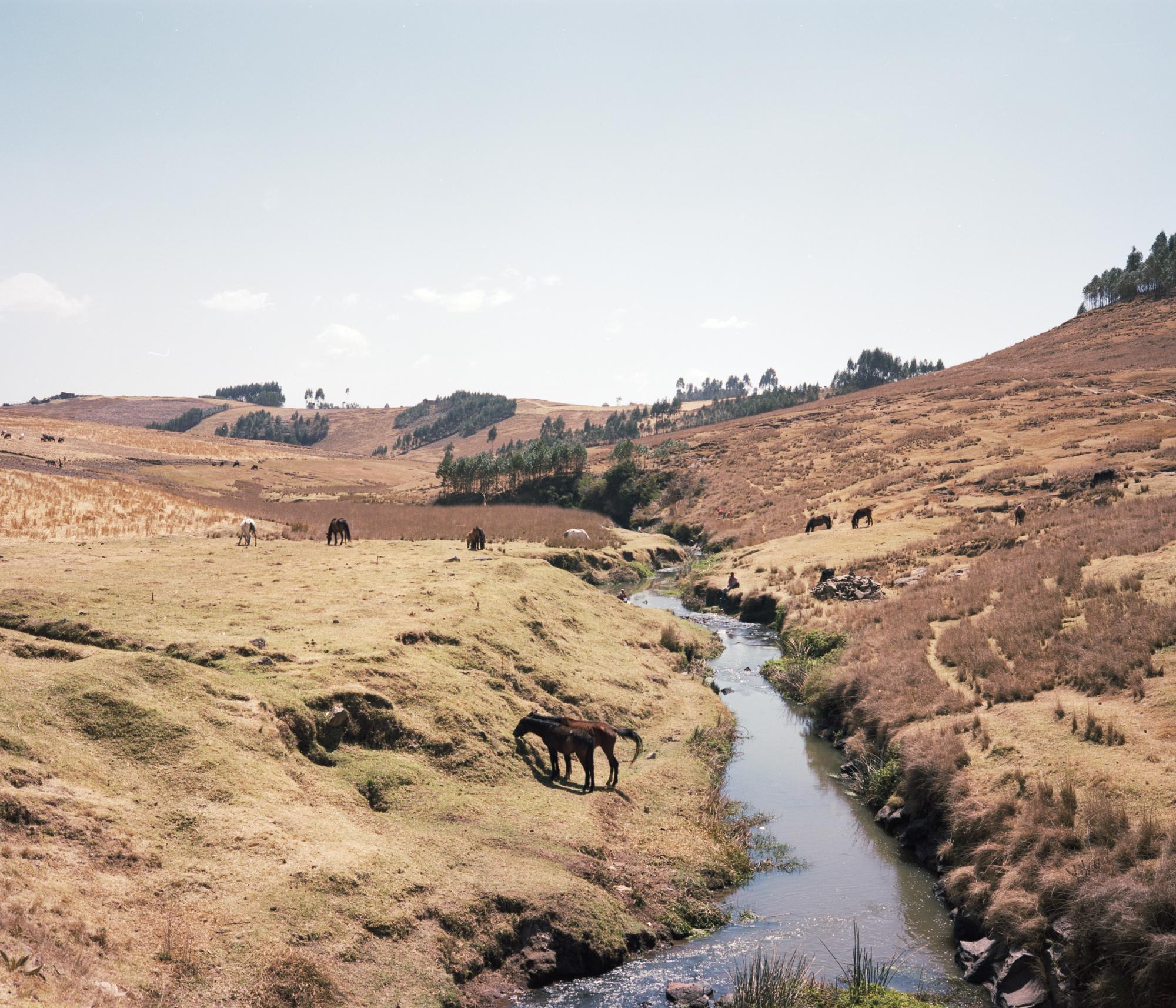 ethiopia-clem-13.jpg