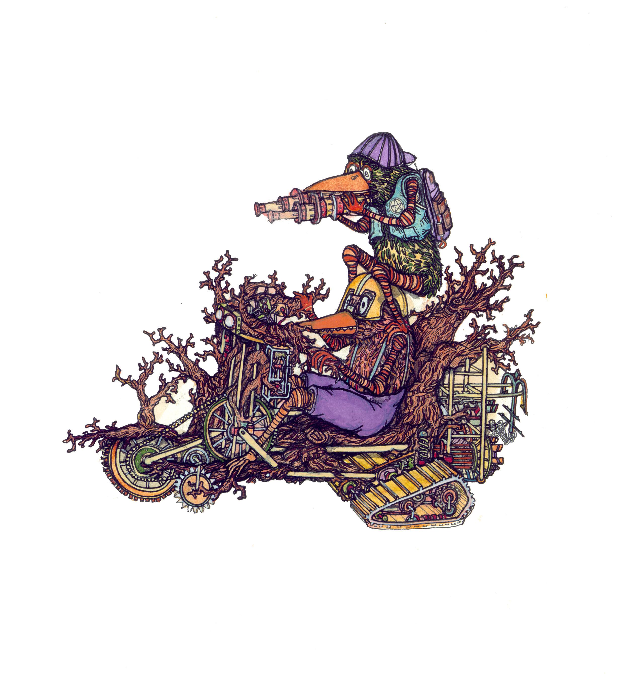bird cycle, c.b.r. , 2015