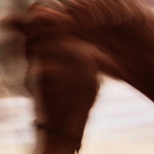 SAUT HERMÈS HORSES - ART DIRECTION AND PHOTOGRAPHY