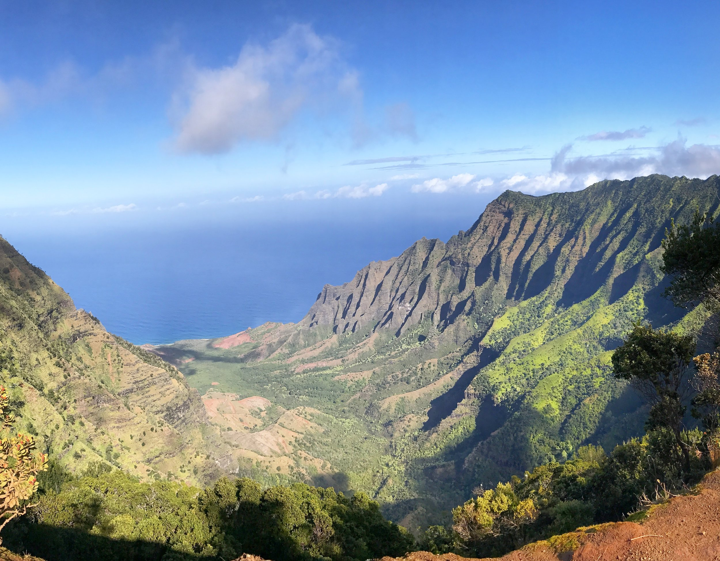 The view from the top of the Waimea Canyon scenic drive