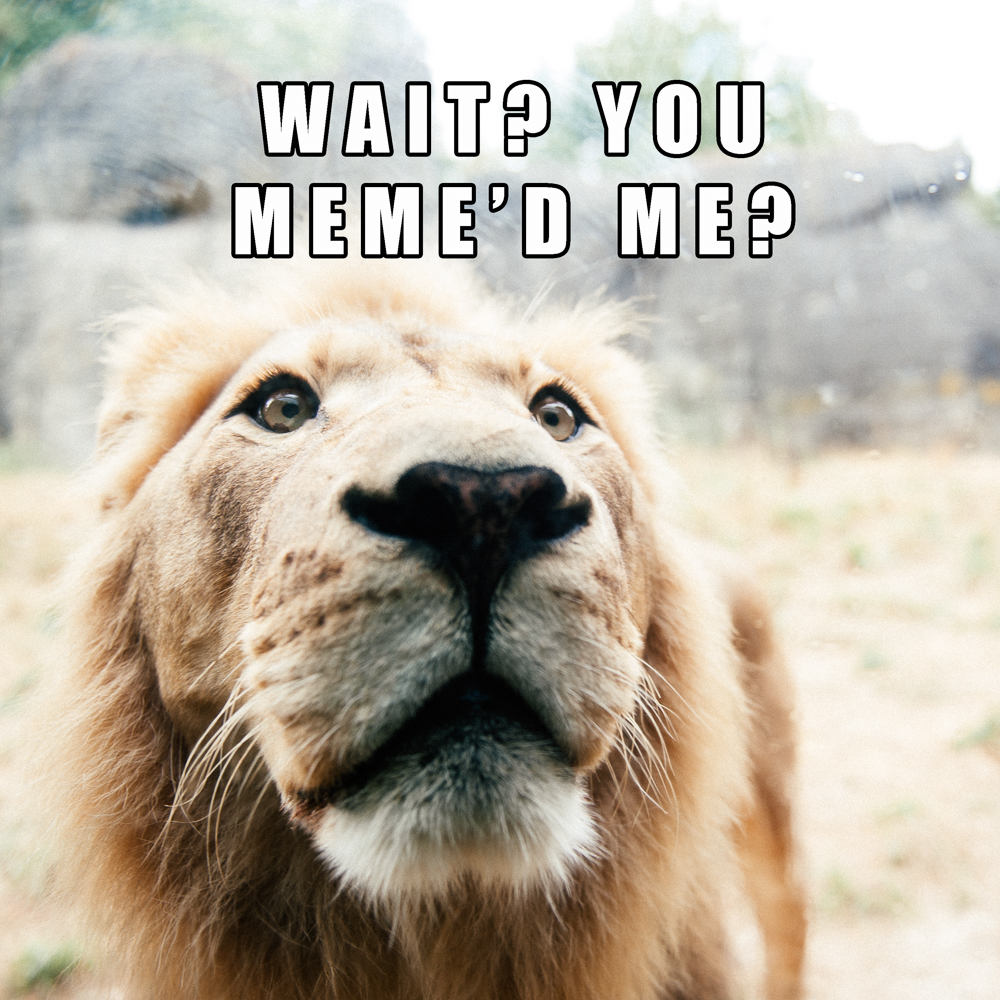 And yes, this joke only works if you pronounce meme the way I do, which may not be the proper way to say it. So...