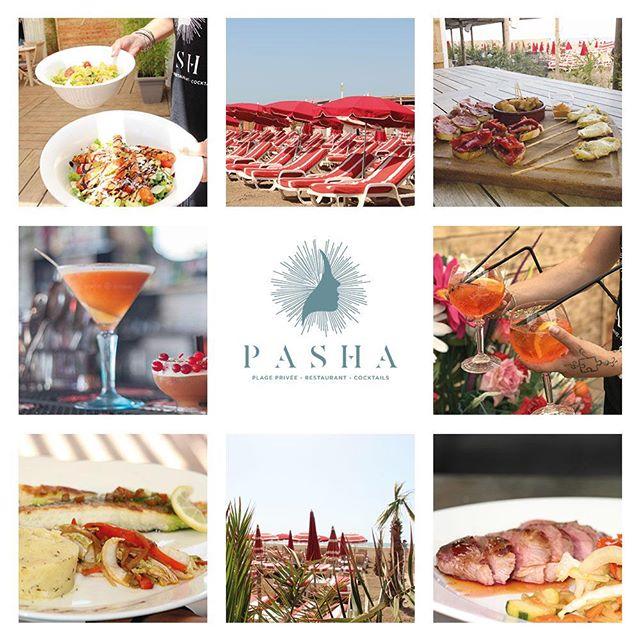 Pasha Plage 🚩 Restaurant, cocktails, tapas, tapas... #chill les pieds dans le sable 📞0468438078