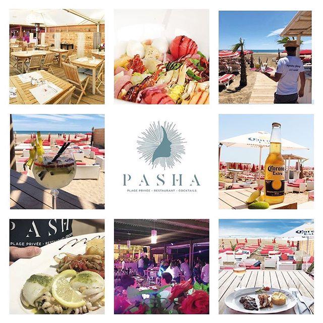 Pasha Plage 🚩 Restaurant, cocktails, tapas, tapas... 📞0468438078 #chill #narbonne #pashaplage #beachlife #instabeach #instagood #gruissanplage