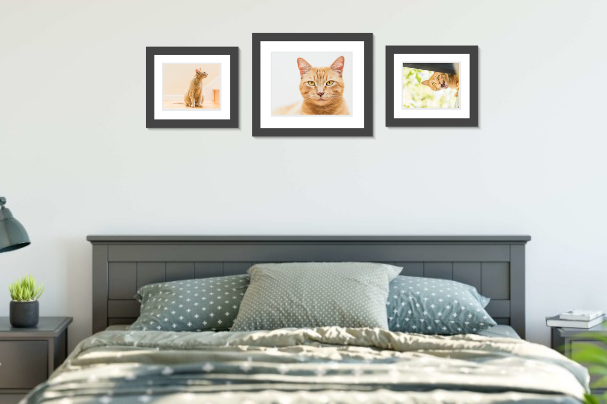 """Bedroom wall - having portraits of happy memories to wake up to. Largest portrait is in a 16""""x20"""" frame."""