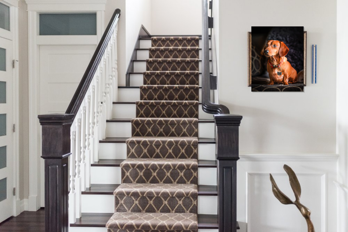 Software design of the wall portrait - shows us what it will look like in this size, and on this wall. Client and I are satisfied this is the right portrait for this space, the right size, and it will fit nicely with their interior. The little pop of colour works, and the subtle pattern in the portrait plays off the staircase runner pattern.
