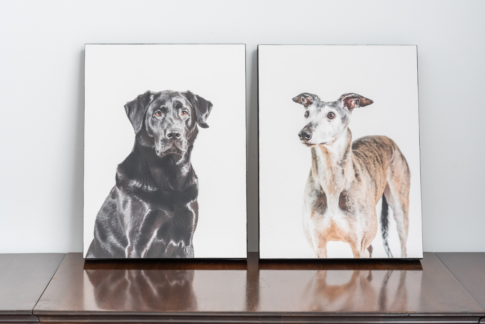 "Two 16"" wood-mounted fine art prints."