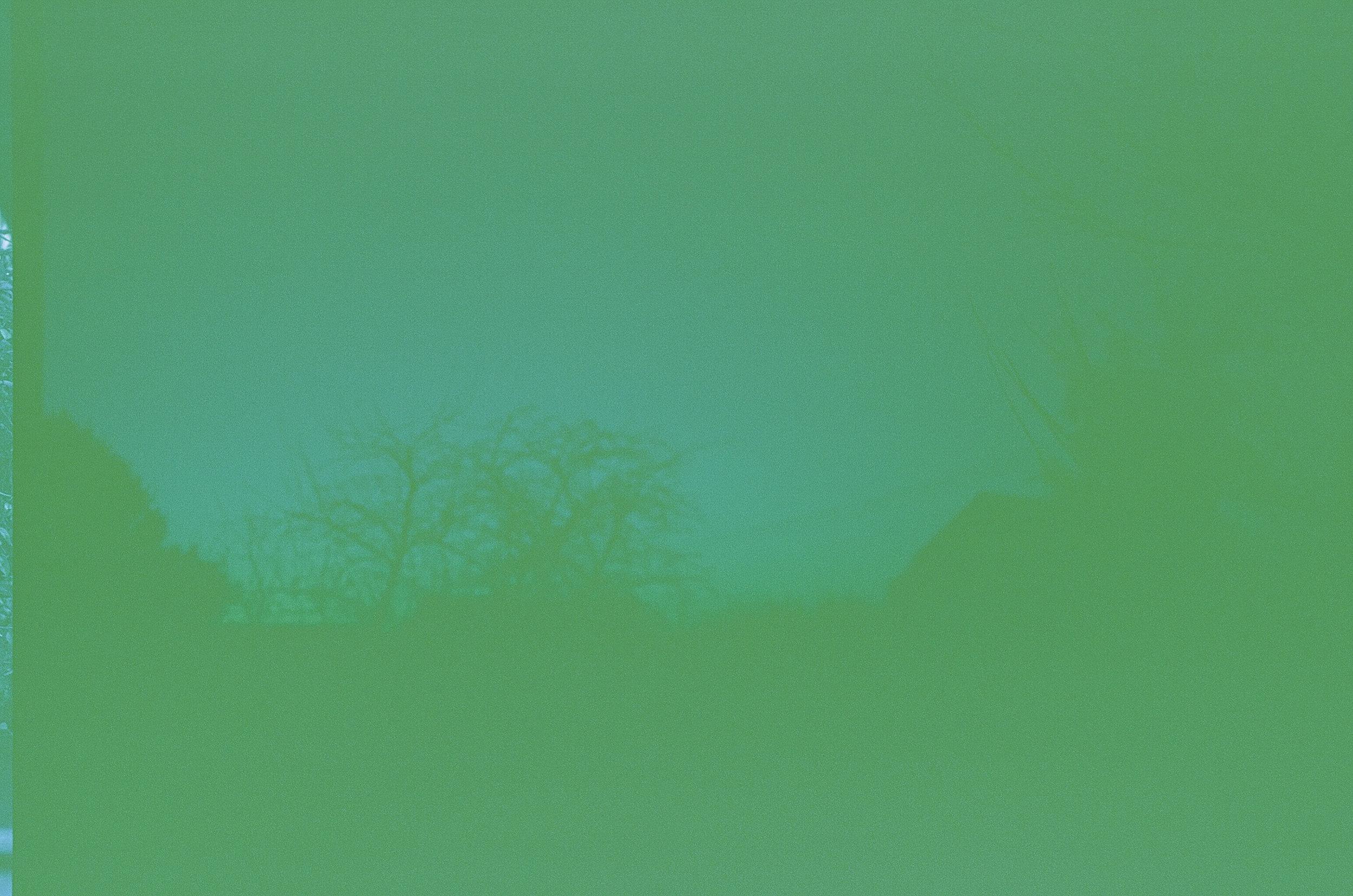 Green-4.jpg
