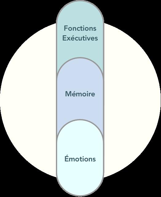 blocs cognitifs : fonctions exécutives, mémoire, émotions