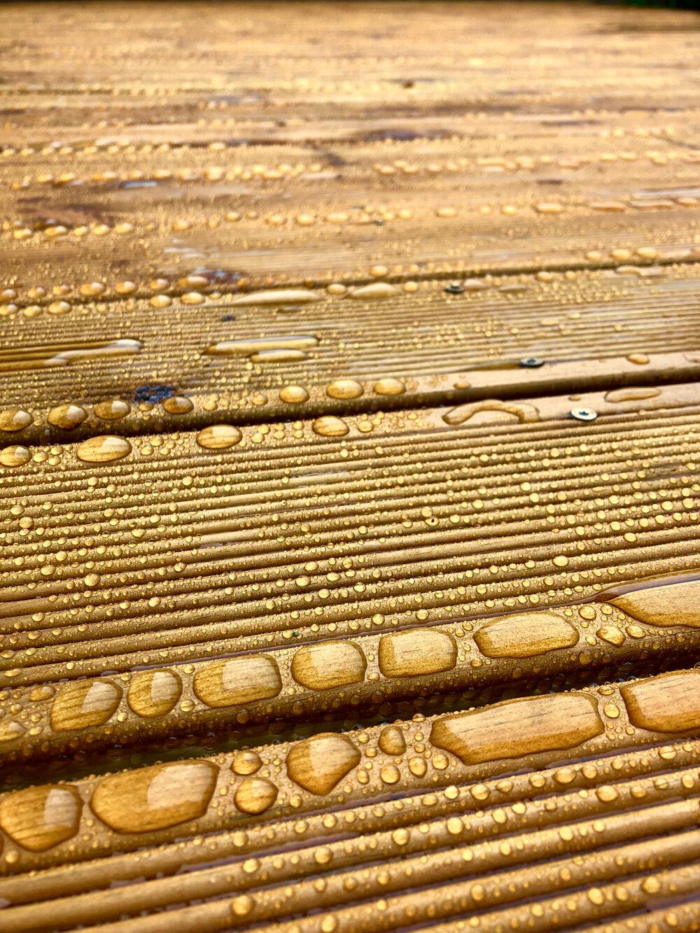 Buckskin on softwood decking