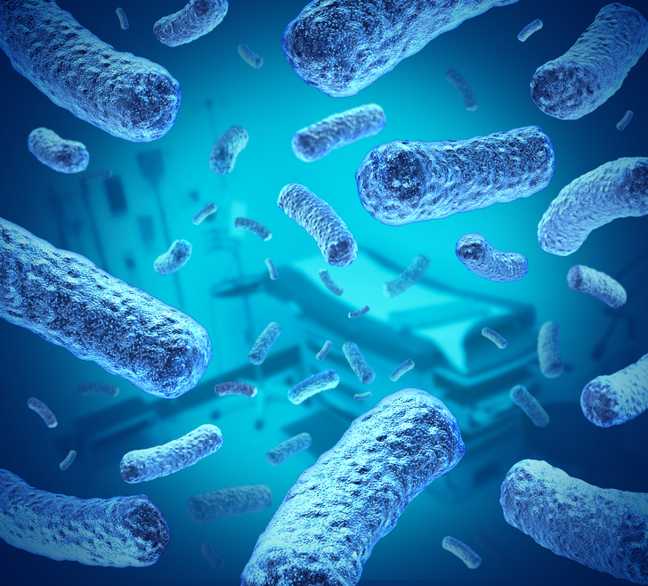 Bacteria, e-coli, and well water
