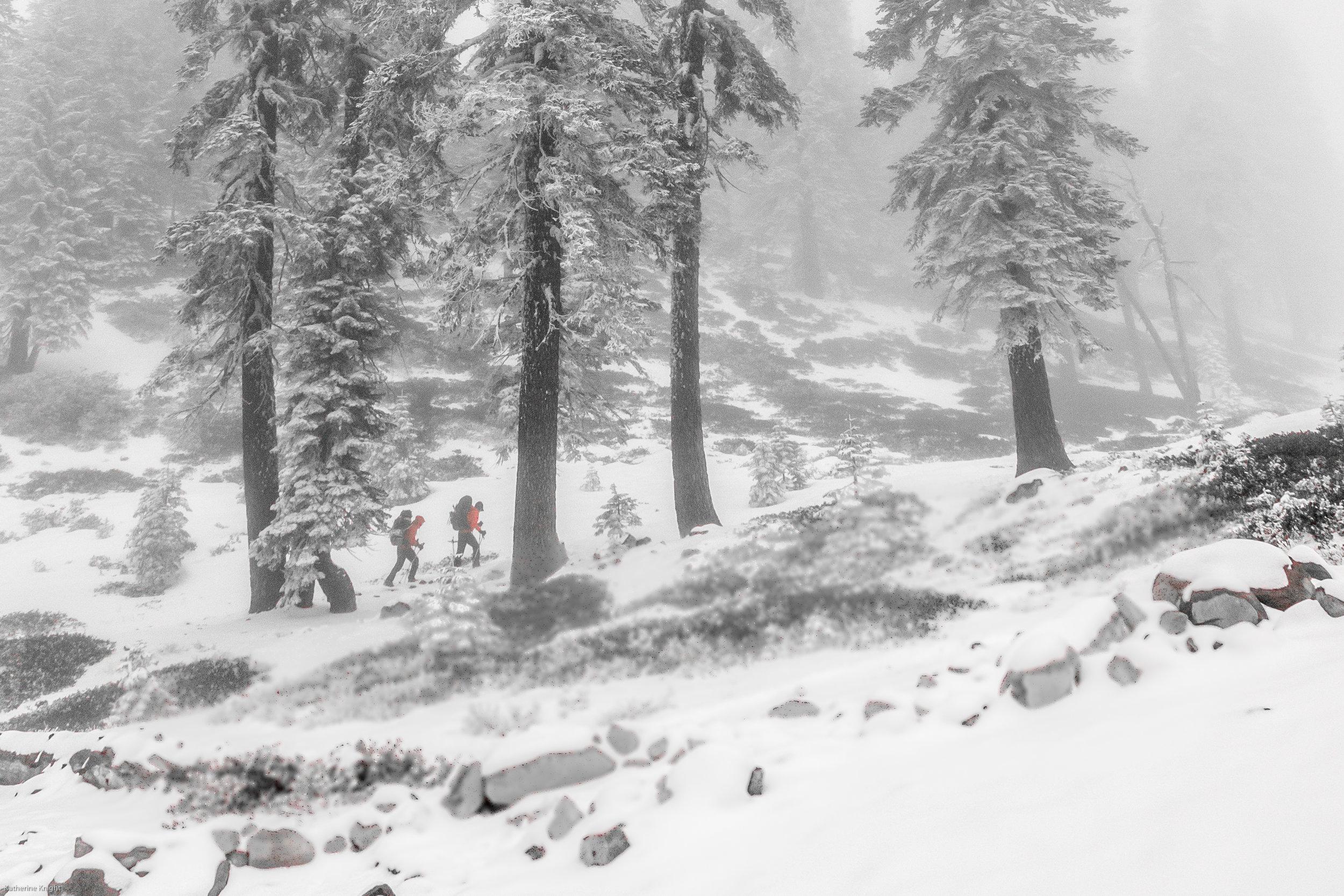 Mountaineering-1.jpg