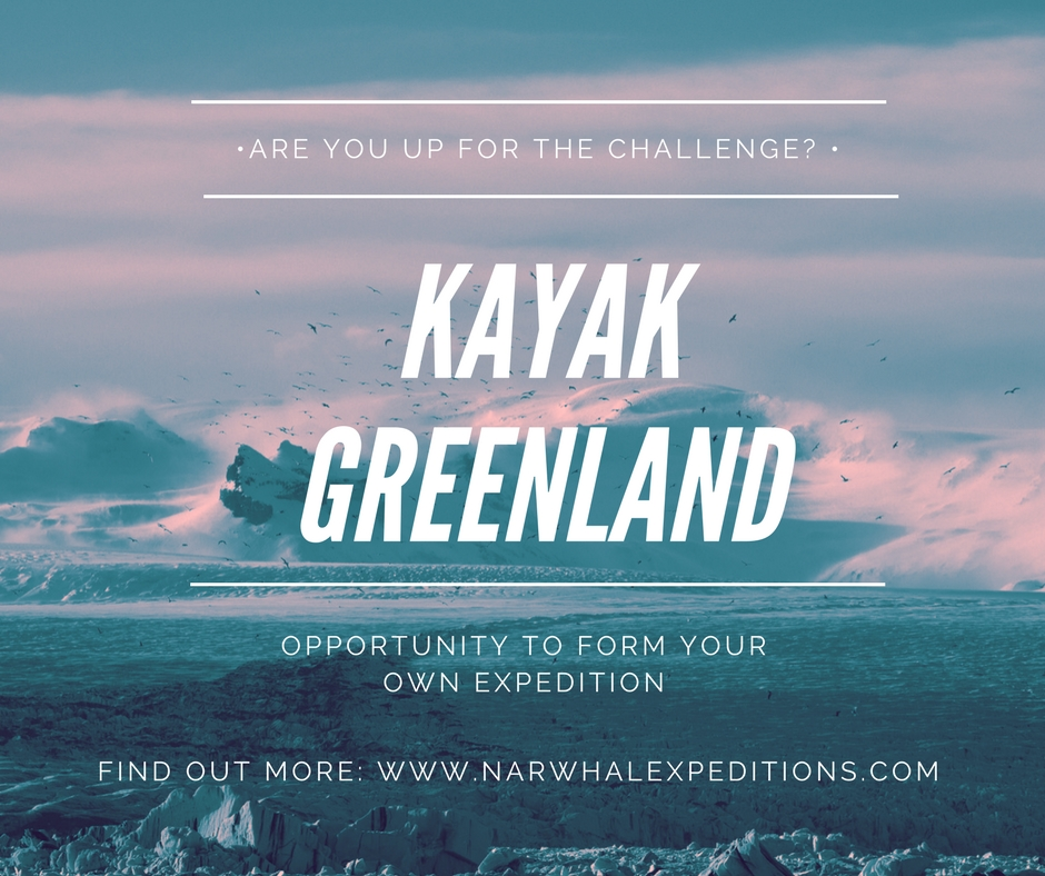 Sea kayak Greenland with expedition yacht Narwhal