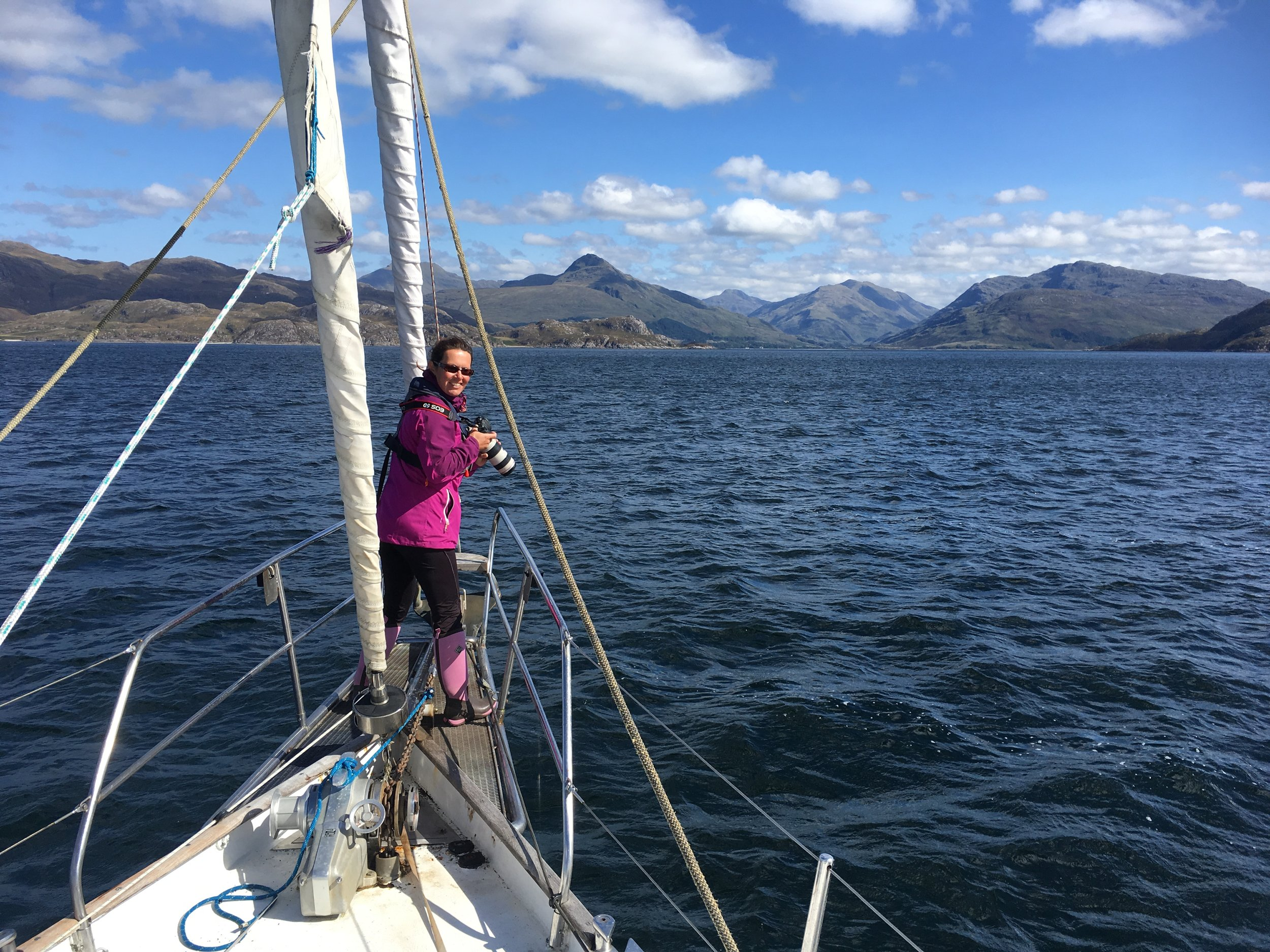 Whale watching from sailing boat Narwhal