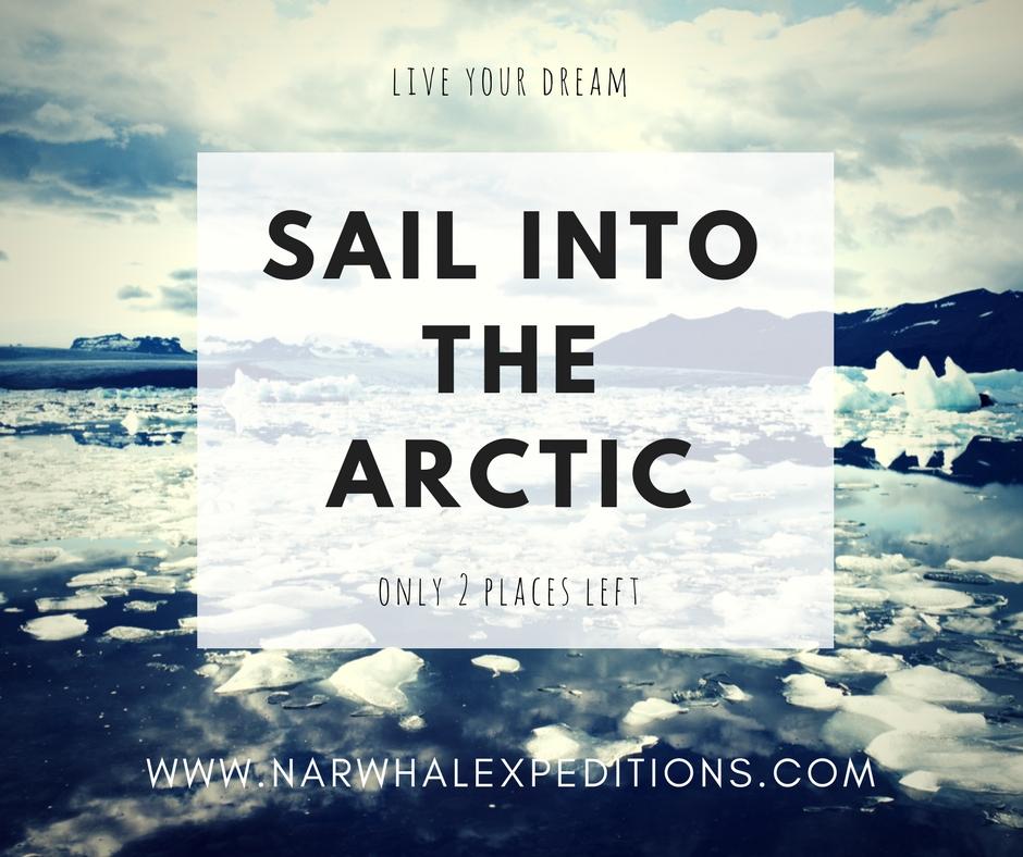 Sail_to_arctic.jpg