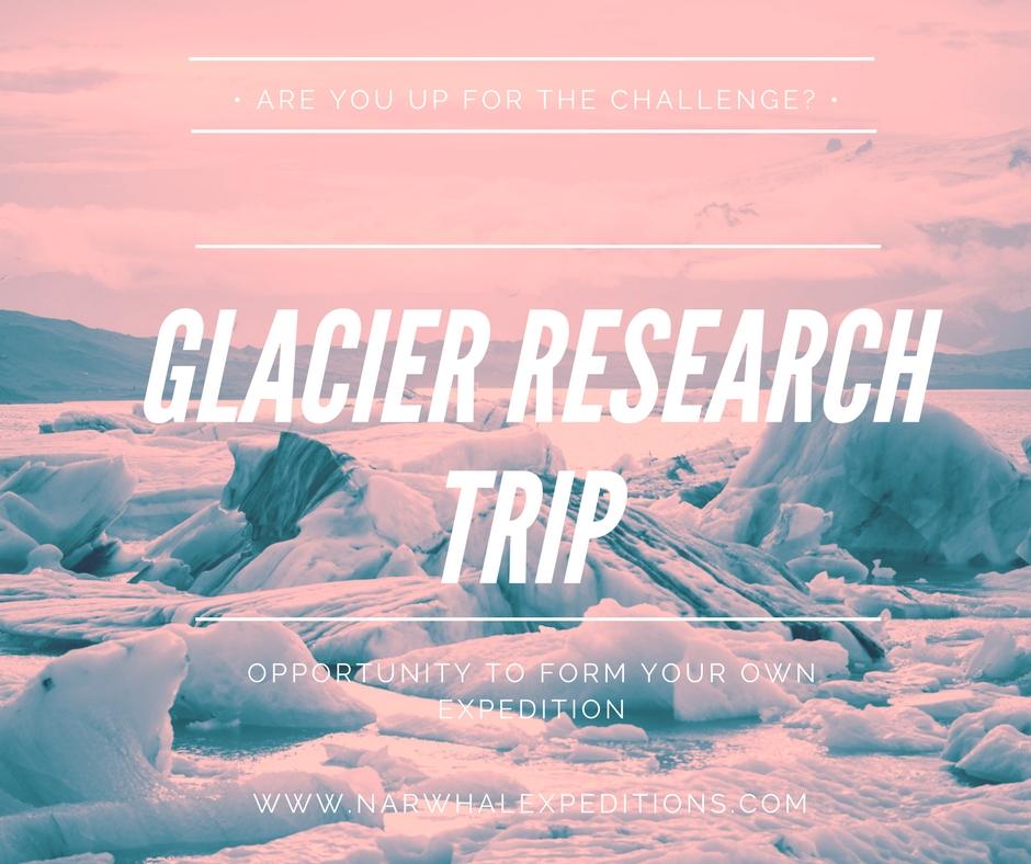 Glacier research expedition