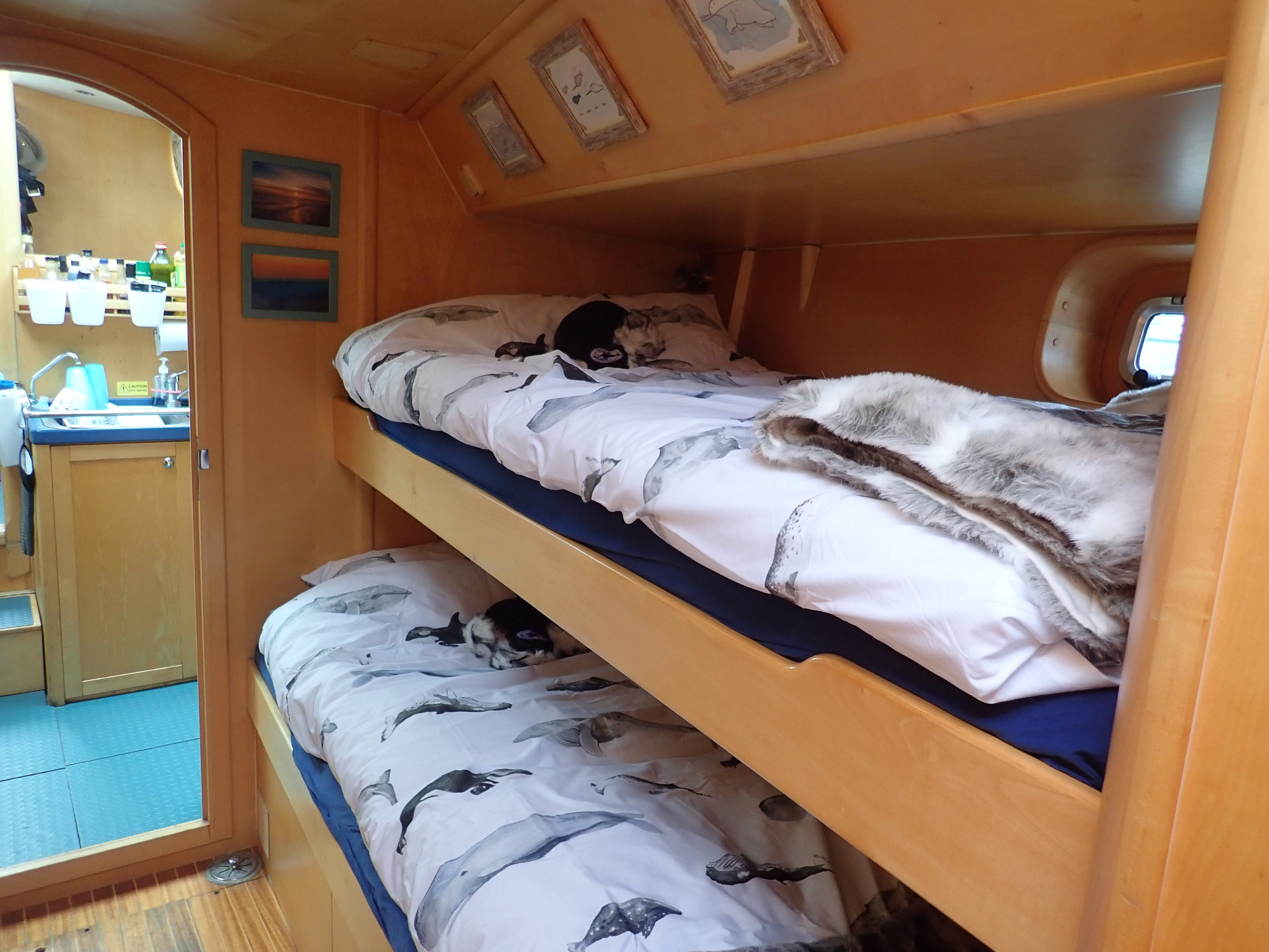 The first of Narwhal's cosy two bedded cabins
